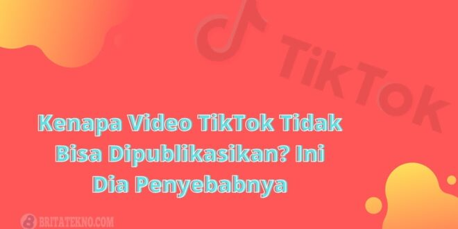 Kenapa Video TikTok Tidak Bisa Dipublikasikan
