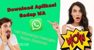 Download Aplikasi Sadap WA Pasangan
